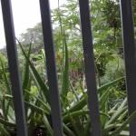 Tìm bạn Nữ tâm sự ở Quảng Bình